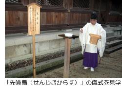 「先喰烏(せんじきからす)」の儀式を見学